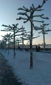 Foto einer winterlichen Promenade