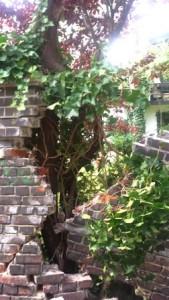 Foto einer eingestürzten Mauer