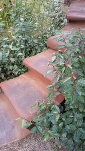 Foto einer Treppe im Garten