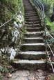 Foto Treppe im Park